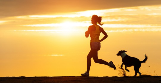La course à pied et les blessures.<br> Comment les éviter ?